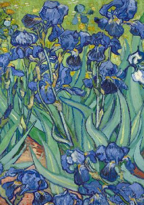 Imagine coperta Van Gogh Irises